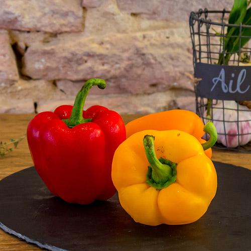 Le poivron couleur – Espagne – Catégorie I