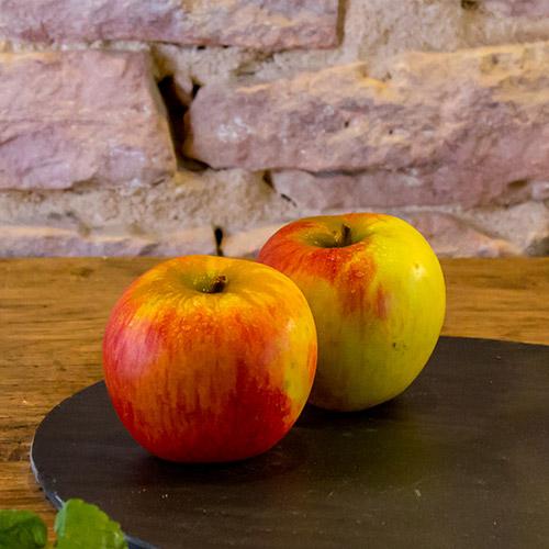 La pomme Fuji de Fujissime – France  –  Catégorie I