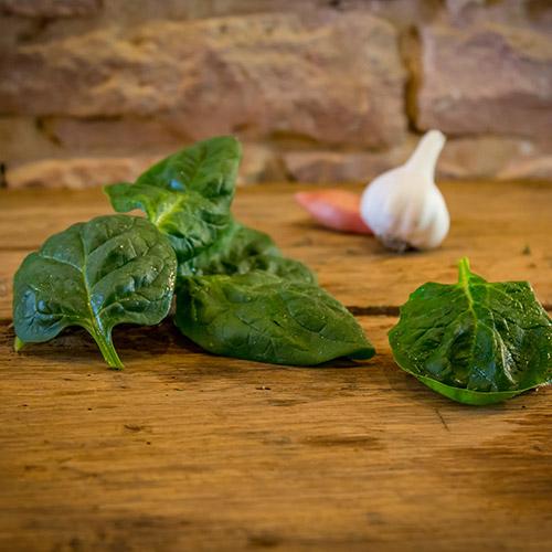 L'épinard frais – France