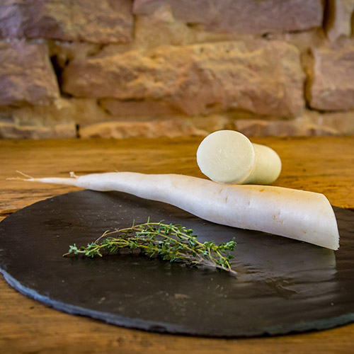 Le navet blanc long – France