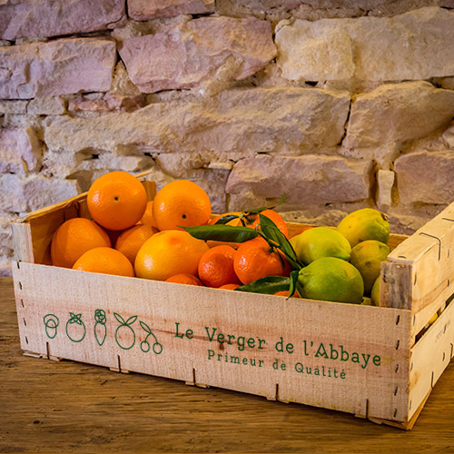 Le panier sélection d'agrumes Bio de Sicile Prix : 27,24€