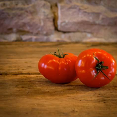 La tomate ronde à farcir : 100% soleil ! – France – Catégorie I