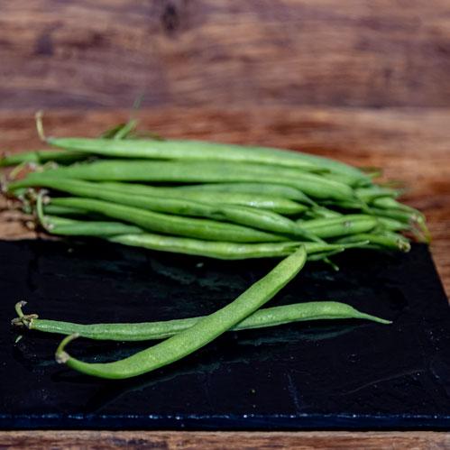 Le haricot vert extra fin – Kenya
