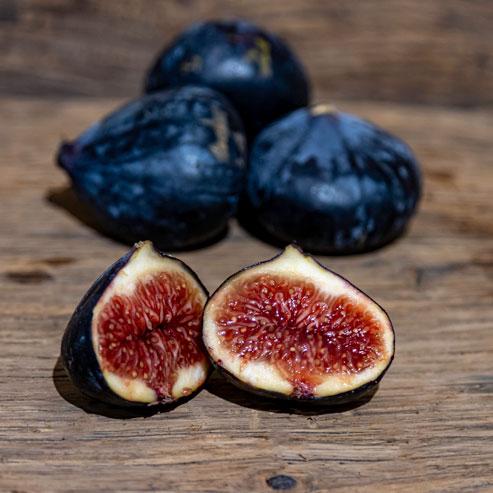 La figue, pêché mignon des gourmands – France